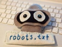 robots协议是什么?在网站优化中,robots.txt有什么用?